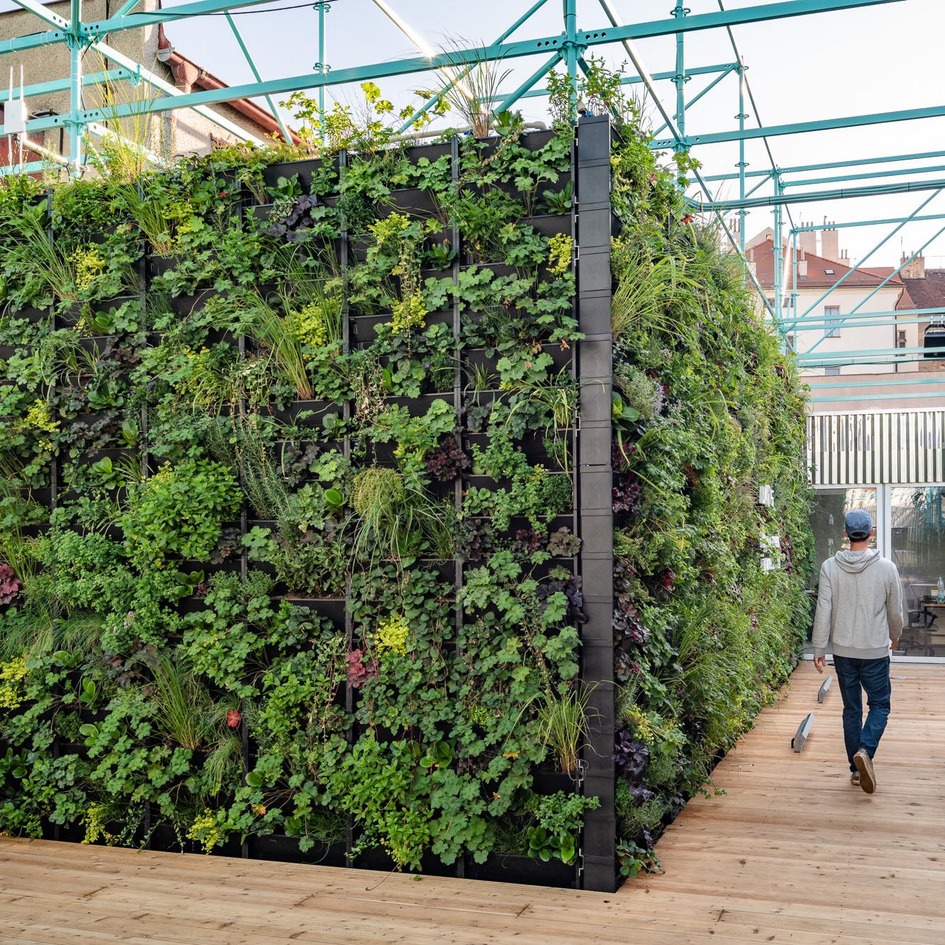 Samozavlažovacie zelené steny PlantBox®