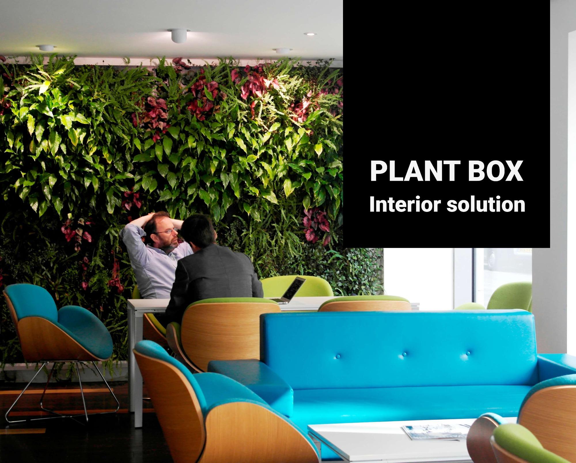Interiérové zelené steny
